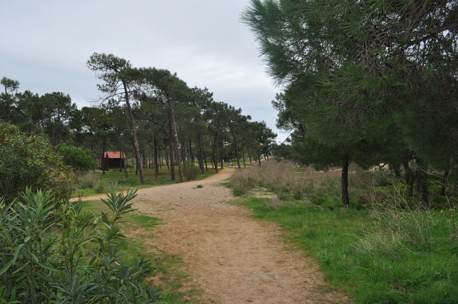 vila real de santo antnio dating site Wwwuniversalorg.